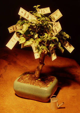 Money Tree MP900341909