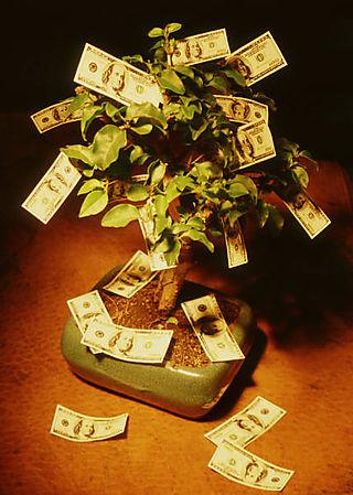 Money Tree - Family Business MP900341908